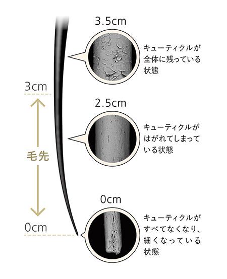 201708_2.jpg